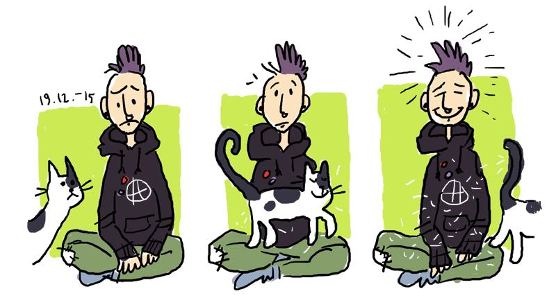kissankarvoja