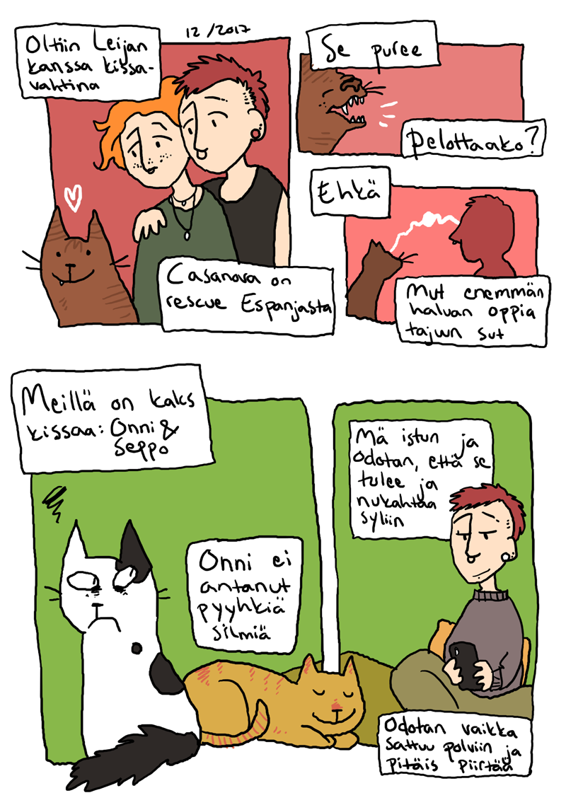 kissajuttu
